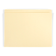 "Gaylord Archival® Reinforced Full 1"" Tab Letter Size File Folders (100-Pack)"