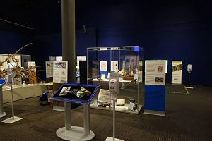 Frank System Showcasing an Exhibit on Darwin and Dinosaurs