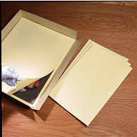 Gaylord Archival® Unbuffered Oversized File Folders (10-Pack)