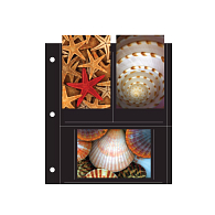 Print File® 6-Pocket Black 3-Hole Punched Album Pages (25-Pack)
