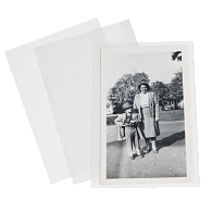 Gaylord Archival® 3 mil Polyester Self-Locking Carte de Visite Sleeves (50-Pack)
