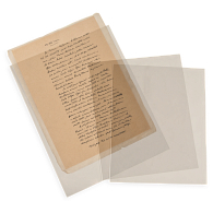 Gaylord Archival® 4 mil Archival Polyester Envelopes with Edge Seal (10-Pack)