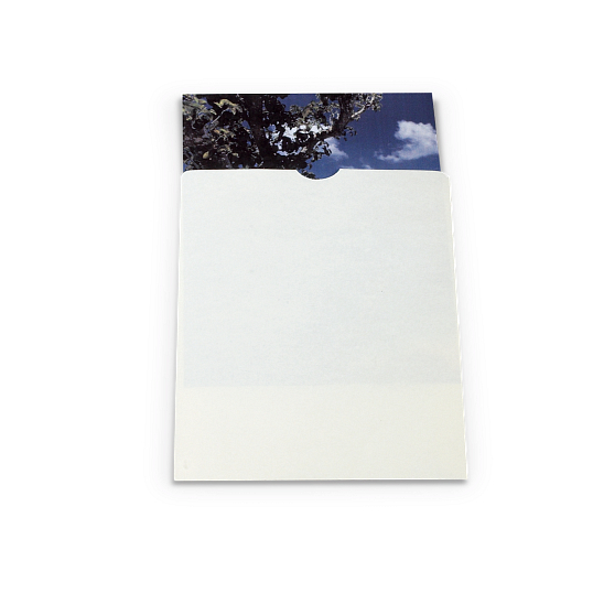 Gaylord Archival® 80 lb. Text Buffered Negative & Print Envelopes with Thumb-Cuts (100-Pack)