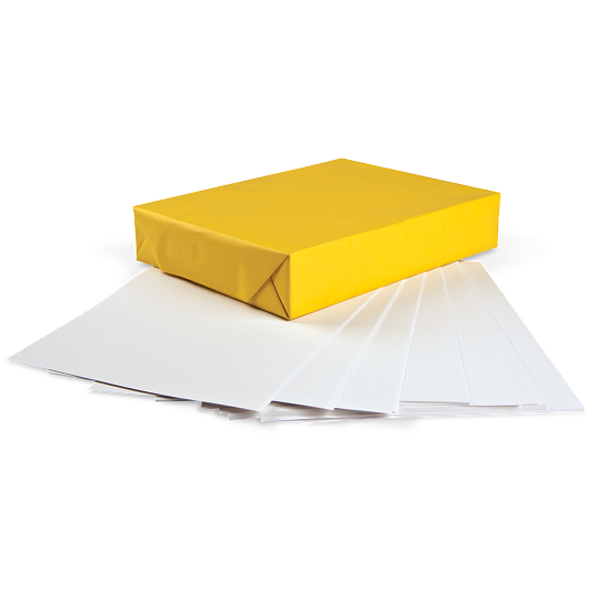 Permalife 20 lb. Bond Paper (500 Sheets)