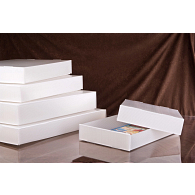 Gaylord Archival® Corrugated Polypropylene Print Box