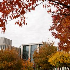Luddy Hall, home to the Indiana University Luddy School of Informatics, Computing, and Engineering, is pictured on a fall day at IU Bloomington on Thursday, Oct. 24, 2019.