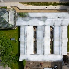 The Jordan Hall Greenhouse is pictured from the air at IU Bloomington on Thursday, June 6, 2019. The stalk of a Century Plant (Agave americana) can be seen growing out of the roof of the greenhouse in the upper right.