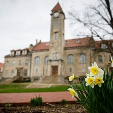 Daffodils bloom in front of the Student Building on the second day of spring at Indiana University Bloomington on Friday, March 20, 2020.