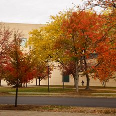 The Eskenazi Museum of Art is pictured on a fall day at IU Bloomington on Thursday, Oct. 24, 2019.