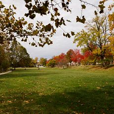 Dunn Meadow is pictured on a fall day at IU Bloomington on Thursday, Oct. 24, 2019.