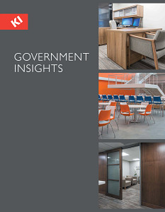Market Overview - Government Insights