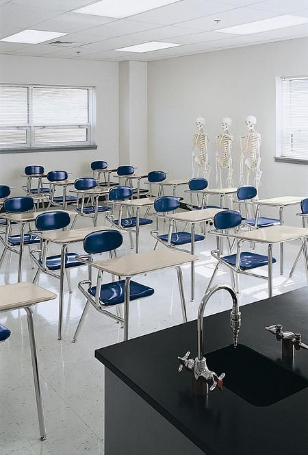 Seck classroom IL61