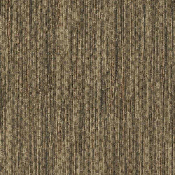 Timber Moss