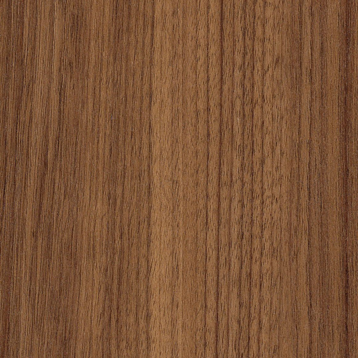 Exotic Walnut tile