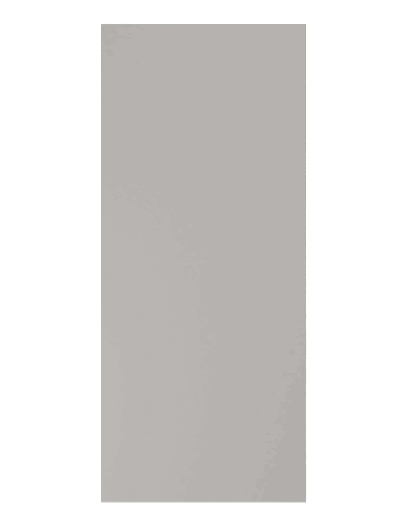 Masonite Architectural Gray Painted Door