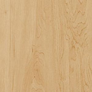 Kensington Maple