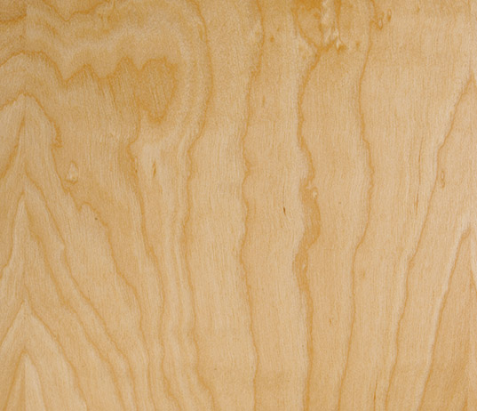 plain sliced white birch wood with clear factory finished stain