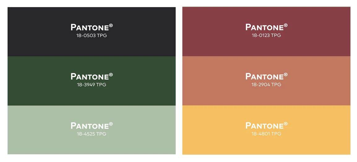 Regenerate Color Palette