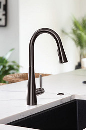 Sleek Black Stainless One Handle Kitchen Faucet
