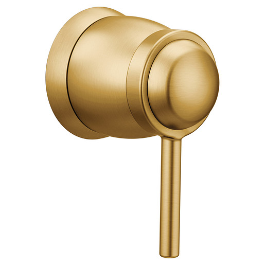 Align Brushed Gold Volume Control Trim