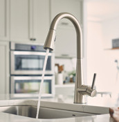 Sleek Kitchen Faucet