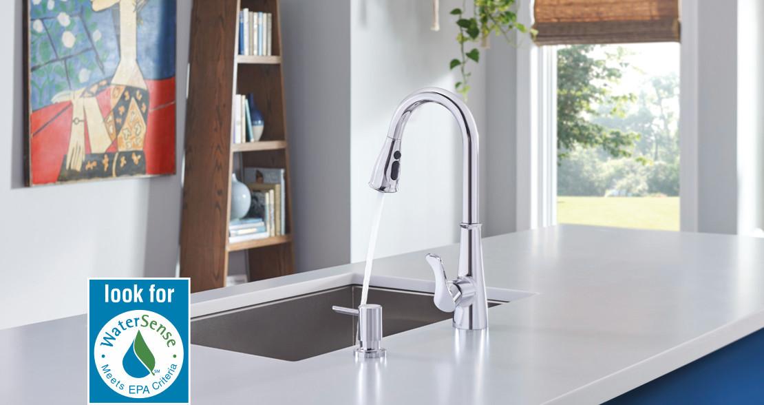 WaterSense Label & Kitchen Faucet