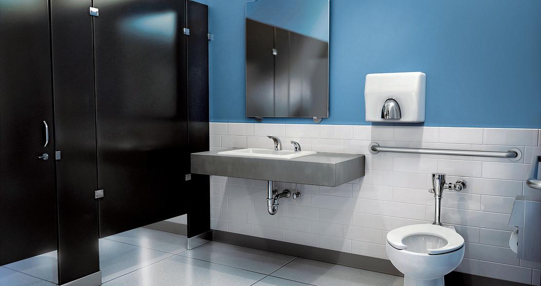 Lav Faucet, Flush Valves & Safety Grab Bars