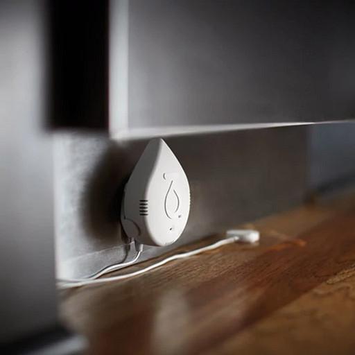 Flo by Moen™ Smart Water Detector