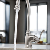 Spot Resist Stainless Bar Faucet