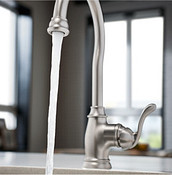 Spot Resist Stainless Bar Faucet