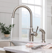 Noell Single-Handle Kitchen Faucet With Side Spray In Spot Resist Stainless 87506SRS