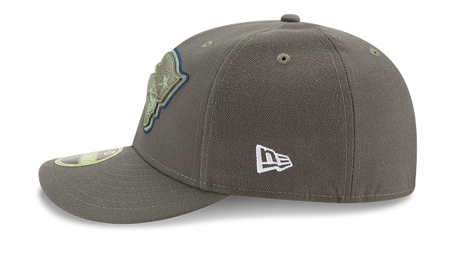 NEW ENGLAND PATRIOTS SALUTE TO SERVICE LOW PROFILE 59FIFTY FITTED