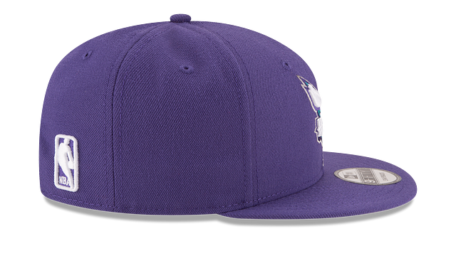 CHARLOTTE HORNETS TEAM COLOR 9FIFTY SNAPBACK