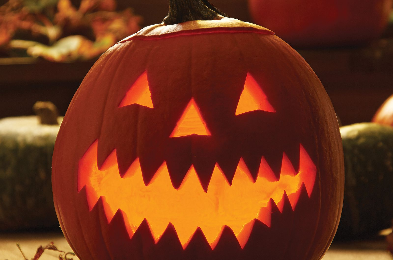 Halloween Party Idea: Trick-or-Treat After-Party