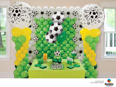 Goal_Net_Party_Display