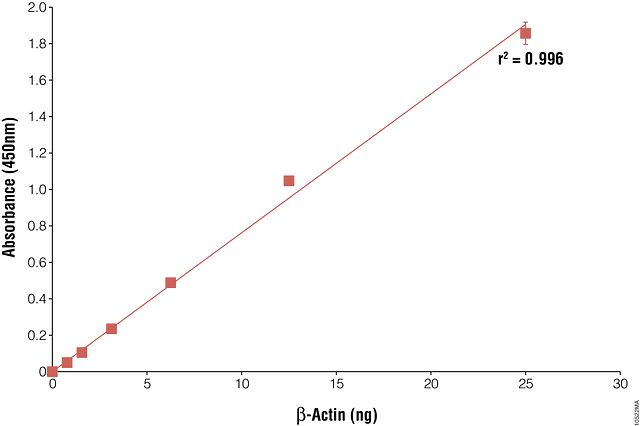 Enzyme-linked immunosorbent assay (ELISA) for ?-actin.