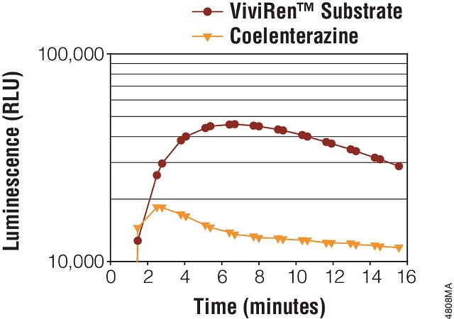 Luminescence reaches near-maximum levels within minutes of ViviRen™ Live Cell Substrate or coelenterazine addition.