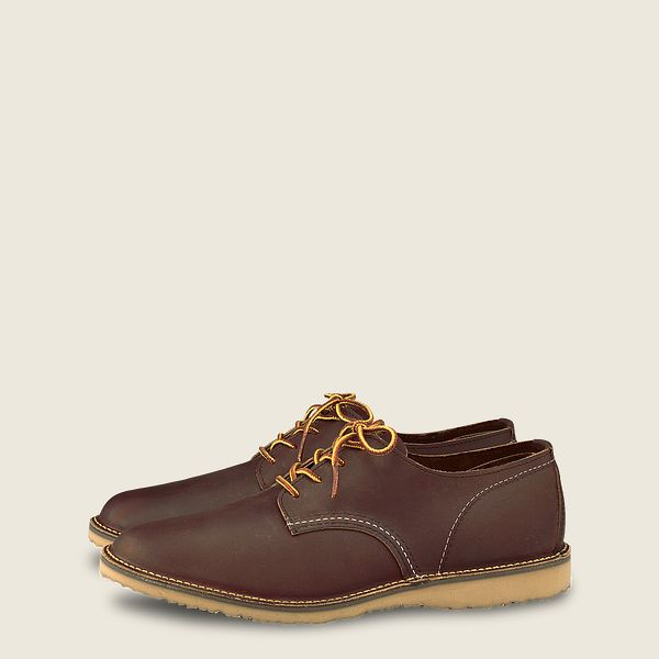 Weekender Oxford Product image
