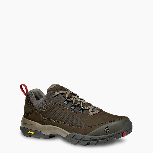 Talus XT Low GTX Product image
