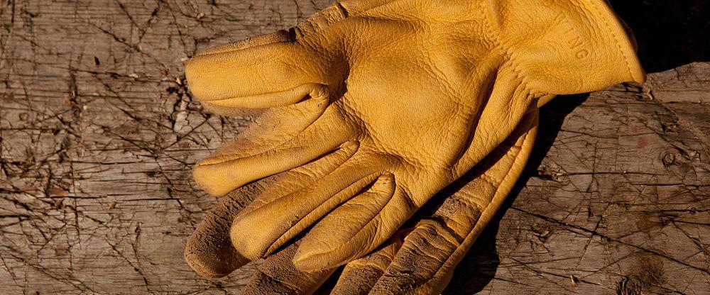 Unlined Buckskin Leather Glove Gallery Image 2