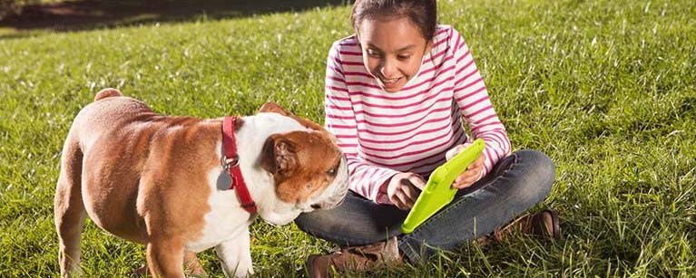 girl-and-dog-field-tablet-card