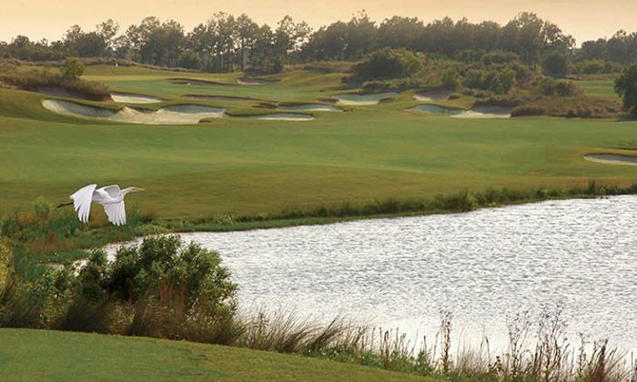 Barefoot Golf Resort - Fazio Course