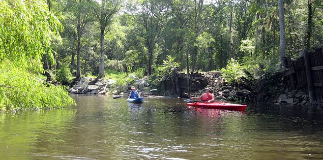 Kayakers on South Carolina's Edisto River