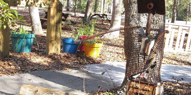 Myrtle Beach State Park outdoor wildlife habitat in South Carolina