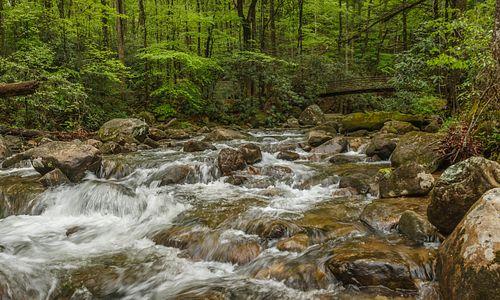 Mountain Bridge Wilderness Area