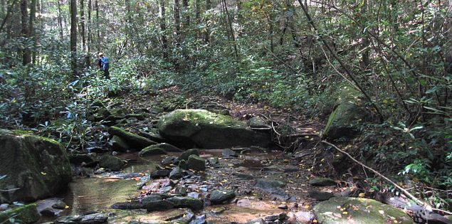 The Coldspring Branch Trail in Caesars Head State Park in Upstate South Carolina