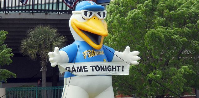 South Carolina's minor league Myrtle Beach Pelicans