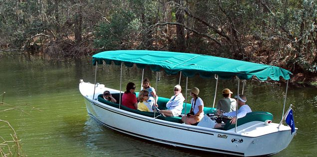 Wildlife boat tour in Hilton Head Island, South Carolina