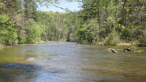 Chattooga National Wild & Scenic River