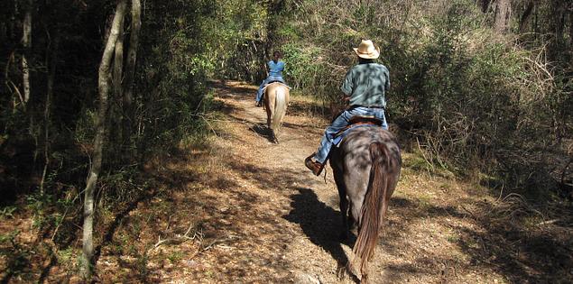 Horseback riding at South Carolina's Middleton Place